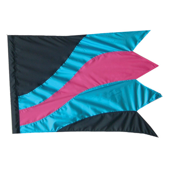 Custom Flags: TM214