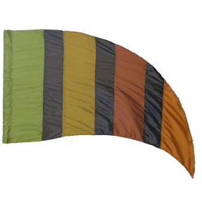 Custom Flags: AB111