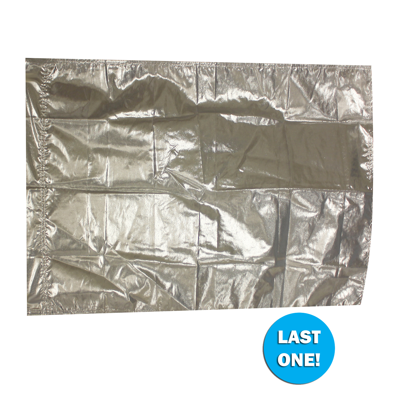 Closeout Flags: 090323 Custom Size Silver Lamé