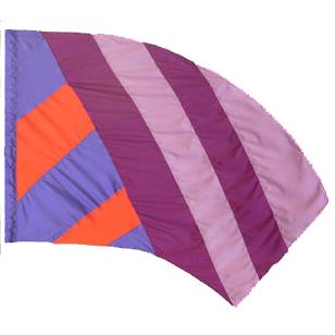 Custom Flags:  SW-011