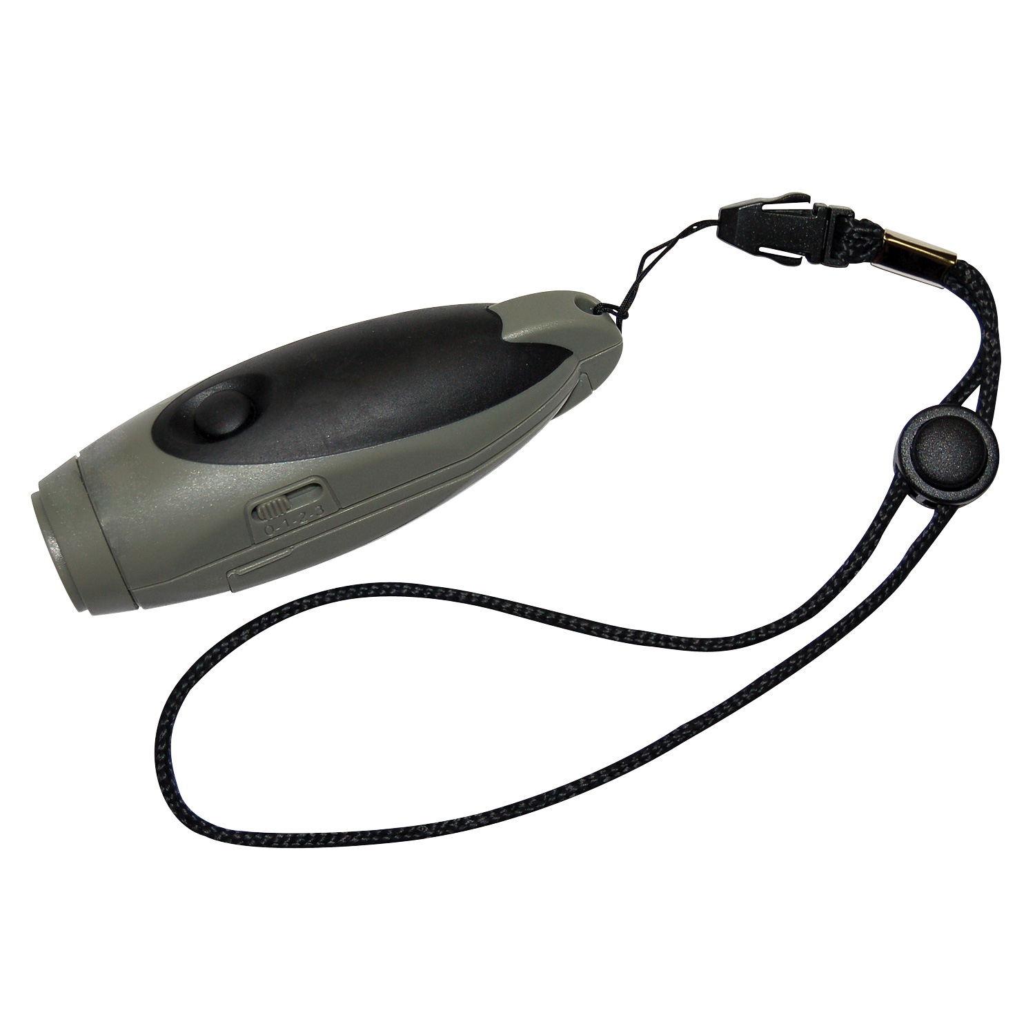 Electronic Whistle